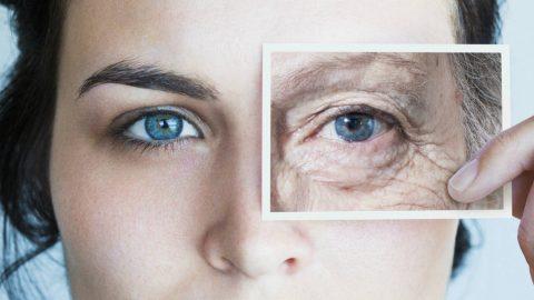 Arrêter le vieillissement : Quel impact pour la civilisation ?